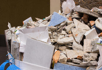 What does a mold remediation company do