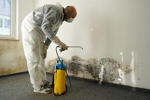 remediation services